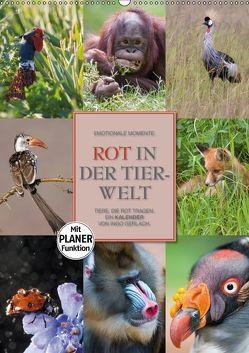 Emotionale Momente: Rot in der Tierwelt (Wandkalender 2018 DIN A2 hoch) von Gerlach GDT,  Ingo