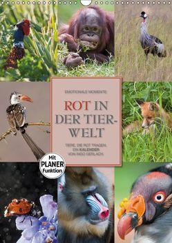 Emotionale Momente: Rot in der Tierwelt (Wandkalender 2019 DIN A3 hoch) von Gerlach GDT,  Ingo