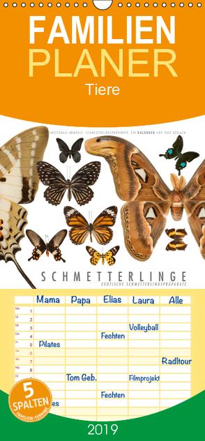 Emotionale Momente: Schmetterlinge – exotische Schmetterlingspräparate – Familienplaner hoch (Wandkalender 2019 , 21 cm x 45 cm, hoch) von Gerlach,  Ingo