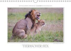 Emotionale Momente: Tierischer Sex. / CH-Version (Wandkalender 2019 DIN A4 quer) von Gerlach GDT,  Ingo