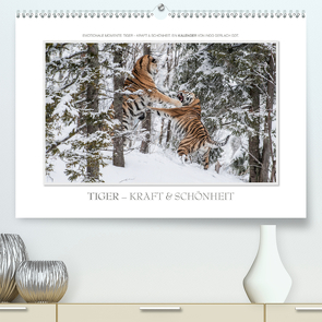 Emotionale Momente: Tiger – Kraft & Schönheit. / CH-Version (Premium, hochwertiger DIN A2 Wandkalender 2020, Kunstdruck in Hochglanz) von Gerlach GDT,  Ingo