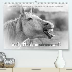 Emotionale Momente: Weiße Pferde in schwarzweiß. (Premium, hochwertiger DIN A2 Wandkalender 2021, Kunstdruck in Hochglanz) von Gerlach,  Ingo