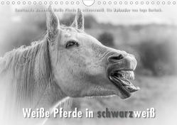 Emotionale Momente: Weiße Pferde in schwarzweiß. (Wandkalender 2021 DIN A4 quer) von Gerlach,  Ingo