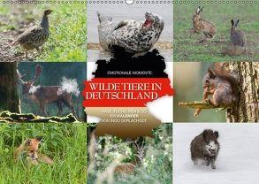 Emotionale Momente: Wilde Tiere in Deutschland (Wandkalender 2018 DIN A2 quer) von Gerlach GDT,  Ingo