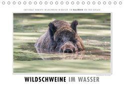 Emotionale Momente: Wildschweine im Wasser (Tischkalender 2019 DIN A5 quer) von Gerlach,  Ingo
