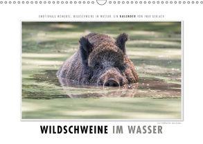 Emotionale Momente: Wildschweine im Wasser (Wandkalender 2018 DIN A3 quer) von Gerlach,  Ingo