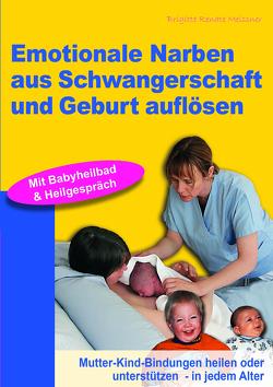 Emotionale Narben aus Schwangerschaft und Geburt auflösen von Meissner,  Brigitte R