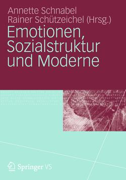 Emotionen, Sozialstruktur und Moderne von Schnabel,  Annette, Schützeichel,  Rainer