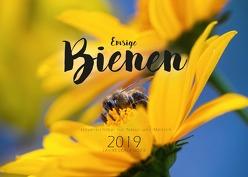 Emsige Bienen (Wandkalender 2019 DIN A3 quer) von Näbrig,  Daniel