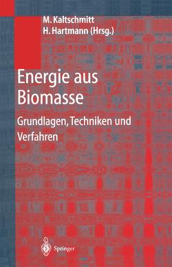 Energie aus Biomasse von Hartmann,  Hans, Hofbauer,  Hermann, Kaltschmitt,  Martin