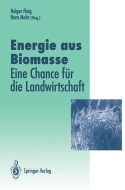 Energie aus Biomasse von Flaig,  Holger, Mohr,  Hans