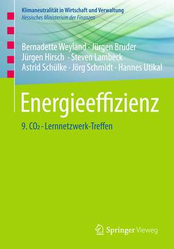 Energieeffizienz von Bruder,  Jürgen, Hirsch,  Jürgen, Lambeck,  Steven, Schmidt,  Jörg, Schülke,  Astrid, Utikal,  Hannes, Weyland,  Bernadette
