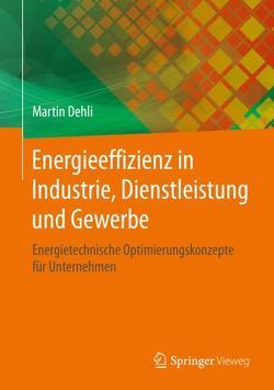 Energieeffizienz von Dehli,  Martin