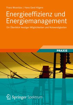 Energieeffizienz und Energiemanagement von Hilgers,  Hans Gerd, Wosnitza,  Franz
