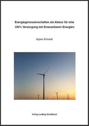 Energiegenossenschaften als Akteur für eine 100% Versorgung mit Erneuerbaren Energien von Schneidt,  Agnes