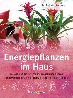 Energiepflanzen im Haus von Hoffmann,  Eva Katharina