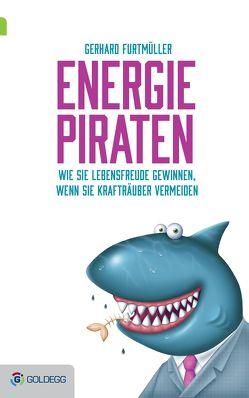 Energiepiraten von Furtmüller,  Gerhard
