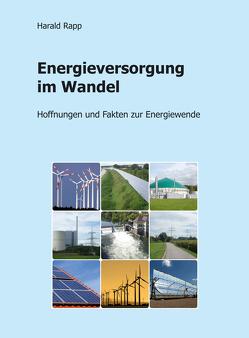 Energieversorgung im Wandel von Rapp,  Harald