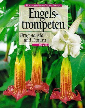 Engelstrompeten von Preissel,  Hans G, Preissel,  Ulrike