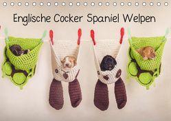 Englische Cocker Spaniel Welpen (Tischkalender 2019 DIN A5 quer) von Wobith Photography - FotosVonMaja,  Sabrina