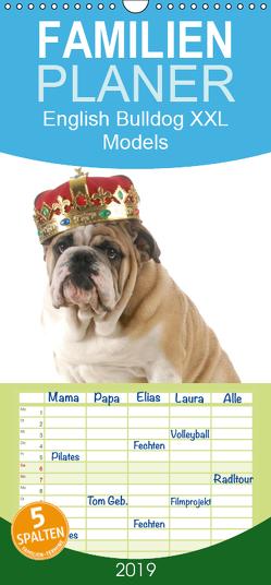 English Bulldog XXL Models – Familienplaner hoch (Wandkalender 2019 , 21 cm x 45 cm, hoch) von Stanzer,  Elisabeth