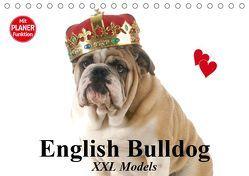 English Bulldog XXL Models (Tischkalender 2019 DIN A5 quer) von Stanzer,  Elisabeth