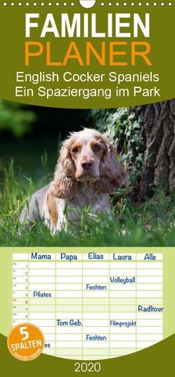 English Cocker Spaniels – Ein Spaziergang im Park – Familienplaner hoch (Wandkalender 2020 , 21 cm x 45 cm, hoch) von Verena Scholze,  Fotodesign
