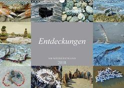 Entdeckungen am Meeresstrand (Wandkalender 2018 DIN A3 quer) von Felix,  Holger