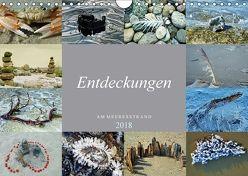 Entdeckungen am Meeresstrand (Wandkalender 2018 DIN A4 quer) von Felix,  Holger