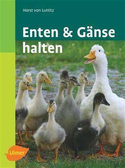 Enten und Gänse halten von Luttitz,  Horst von