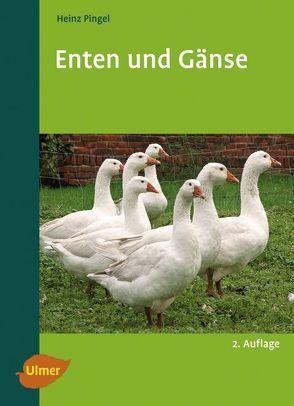 Enten und Gänse von Pingel,  Heinz