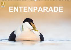 Entenparade (Wandkalender 2020 DIN A2 quer) von birdimagency,  BIA