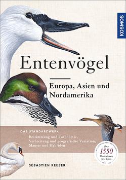 Entenvögel von Reeber,  Sébastien