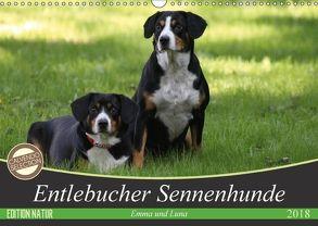 Entlebucher Sennenhunde Emma und Luna (Wandkalender 2018 DIN A3 quer) von SchnelleWelten