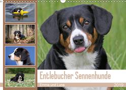 Entlebucher Sennenhunde Emma und Luna (Wandkalender 2019 DIN A3 quer) von SchnelleWelten