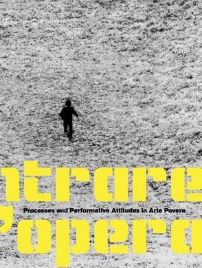 Entrare nell'opera. Prozesse und Aktionen in der Arte Povera