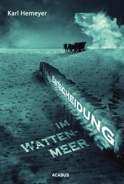 Entscheidung im Wattenmeer von Hemeyer,  Karl
