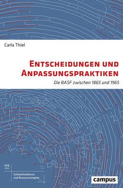 Entscheidungen und Anpassungspraktiken von Thiel,  Carla