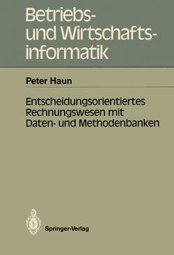 Entscheidungsorientiertes Rechnungswesen mit Daten- und Methodenbanken von Haun,  Peter