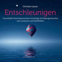 Entschleunigen von Loeser,  Christian