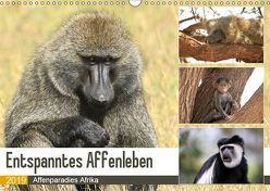 Entspanntes Affenleben (Wandkalender 2019 DIN A3 quer) von Herzog,  Michael