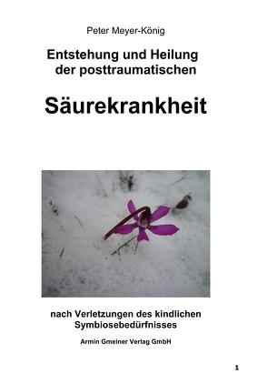 Entstehung und Heilung der posttraumatischen Säurekrankheit von Meyer-König,  Peter