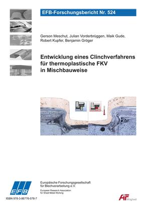 Entwicklung eines Clinchverfahrens für thermoplastische FKV in Mischbauweise von Gröger,  Benjamin, Gude,  Maik, Kupfer,  Robert, Meschut,  Gerson, Vorderbrüggen,  Julian