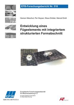 Entwicklung eines Fügeelements mit integriertem strukturierten Formabschnitt von Dröder,  Klaus, Droß,  Marcel, Heyser,  Per, Meschut,  Gerson