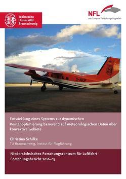 Entwicklung eines Systems zur dynamischen Routenoptimierung basierend auf meteorologischen Daten über konvektive Gebiete von Schilke,  Christina
