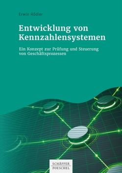 Entwicklung von Kennzahlensystemen von Rödler,  Erwin