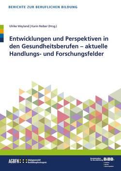 Entwicklungen und Perspektiven in den Gesundheitsberufen von Reiber,  Karin, Weyland,  Ulrike