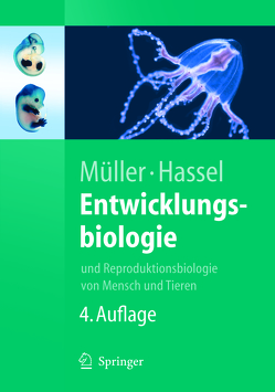 Entwicklungsbiologie von Hassel,  Monika, Müller,  Werner A.