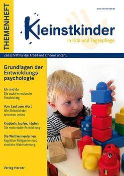 Entwicklungspsychologische Grundlagen 0 bis 3 Jahre von Roos,  Jeanette, Sachse,  Steffi