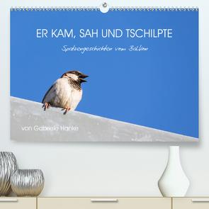 Er kam, sah und tschilpte – Spatzengeschichten vom Balkon (Premium, hochwertiger DIN A2 Wandkalender 2021, Kunstdruck in Hochglanz) von Hanke,  Gabriele
